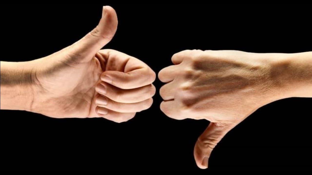 Cadastro Positivo e o Cadastro Negativo