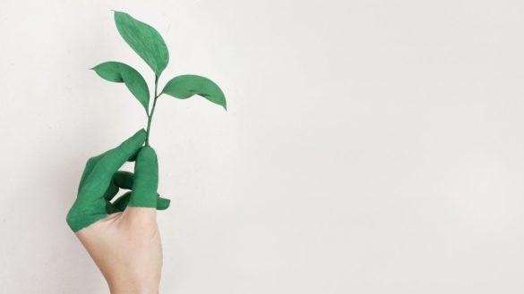 financas-verdes