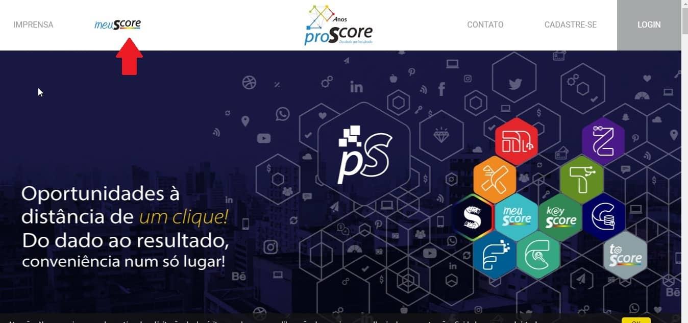 Imagem 1 - Meu Score de credito no site da ProScore